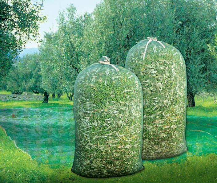 διχτυωτό σακί ελαιοσυλλογής
