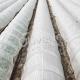 δίχτυα προστασίας καρπουζιού από παγετό