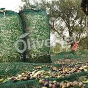 σάκος συλλογής του καρπού της ελιάς